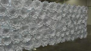 Toronto Flower Wall 1